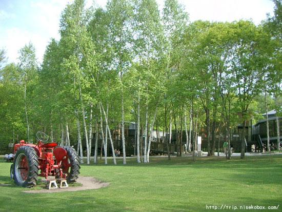 入り口の芝生広場