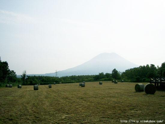 宿の前から羊蹄山